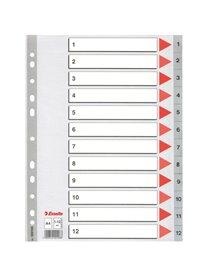 Separatore in PPL grigio numerico 1-12 A4 22,5x29,7cm ESSELTE