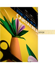 Blister 10fg cartoncino 35x50cm 220gr onice Cartacrea Fabriano
