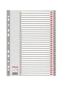 Separatore in PPL grigio numerico 1-31 f.to A4 ESSELTE