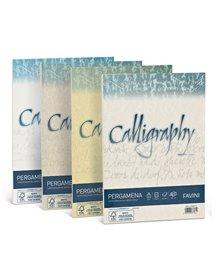 Carta CALLIGRAPHY PERGAMENA 90gr A4 50fg perla 10 FAVINI
